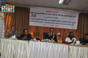 المؤتمر الصحفي لجرحى الثورة السلمية (141)