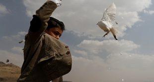 السلام في اليمن